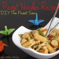 Simple Peanut Noodles Recipe with DIY Thai Peanut sauce fresh Healthy Lunch DIY How To Thai