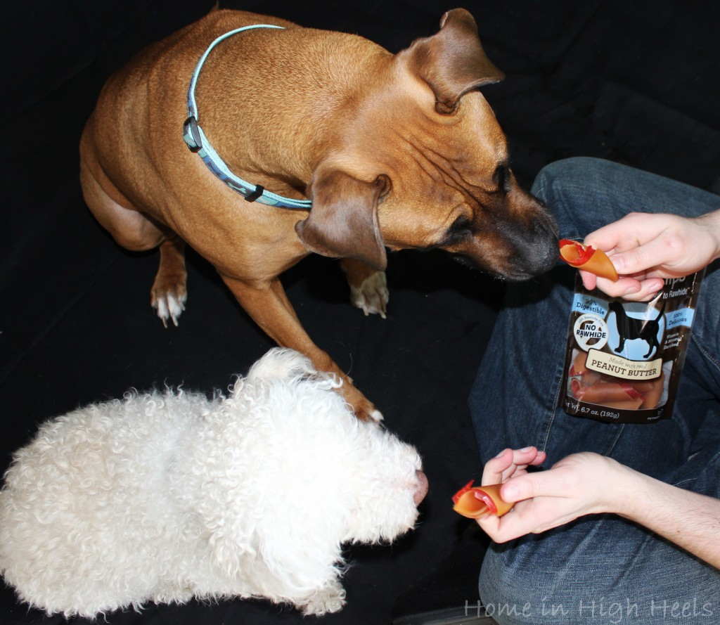 SmartBones SmartChips Peanut Butter Chews Dog Treats are rawhide free & a huge hit with our dogs! Great, healthy treats that are easy to digest & enjoy! on Home in High Heels
