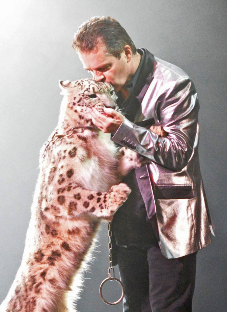 Check out Wild Magic & see Dirk Arthur Make Some Big Cat Magic in Vegas! Check out why the show is one not to be missed! on Home in High Heels | www.homeinhighheels.com