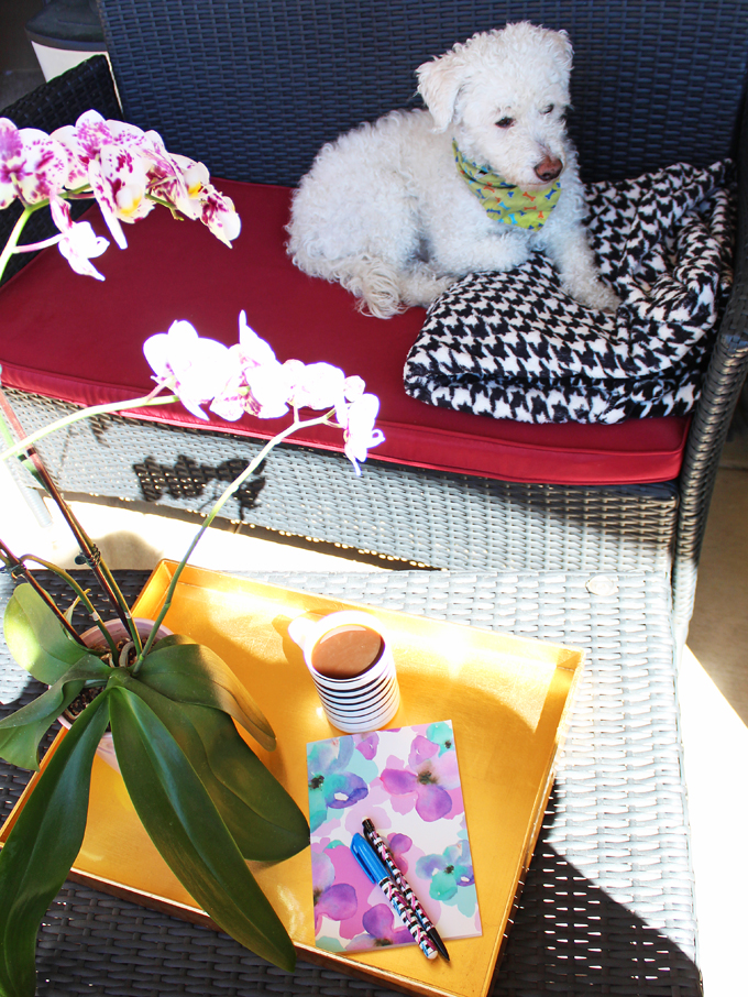 Creating an Apartment Patio I Love with LuxeDecor on Home in High Heels