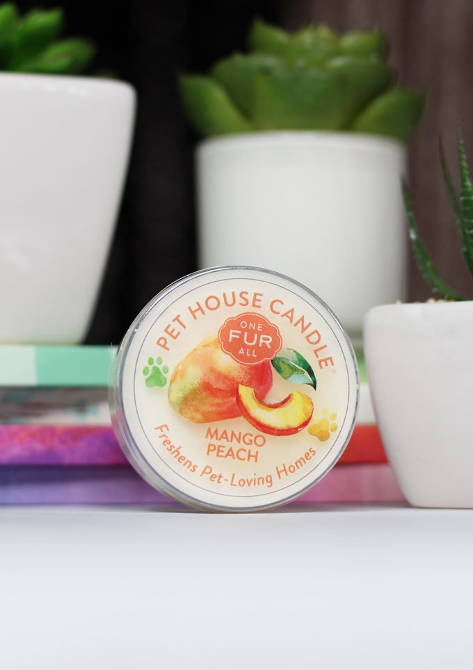 This is the Mango Peach Candle Meet the perfect hand poured, dye-free candles for your home- especially if you have pets! One Fur All Pet House Candle Mini Sampler Spring Mix Review on Home in High Heels