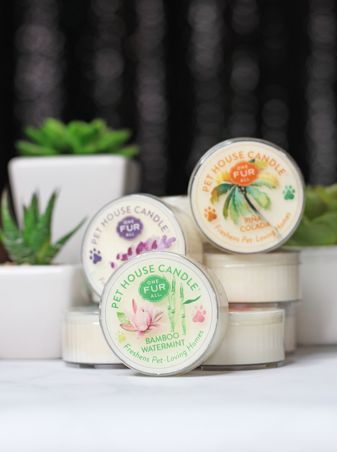 Meet the perfect hand poured, dye-free candles for your home- especially if you have pets! One Fur All Pet House Candle Mini Sampler Spring Mix Review on Home in High Heels