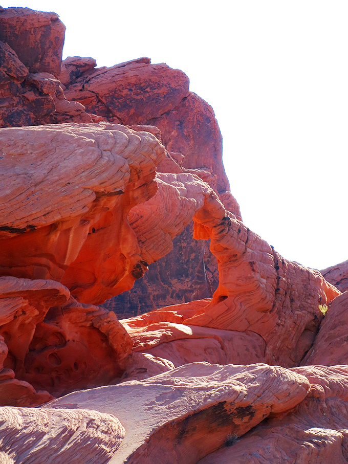 Valley of Fire Outside Las Vegas, Nevada My top 5 reasons Las Vegas has become home + local spots to visit! Why Do You Like Living in Las Vegas So Much? on Home in High Heels